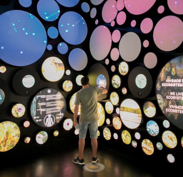 Museu do Amanhã é gerido pelo IDG